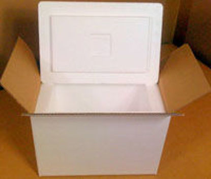 "Picture of Styrofoam Coolers Box For 13 3/4 x 10 x 10"" Boxes"
